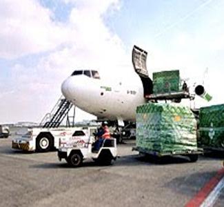 Flair Shipping LLC